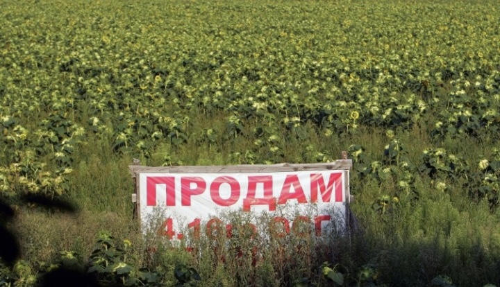 Ринок землі: на Хмельниччині уже продали 5,4 гектара